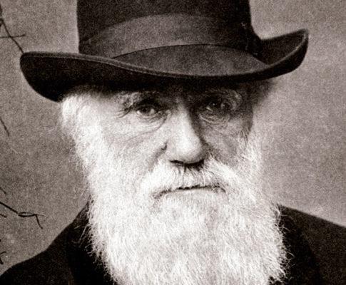 Les Conseils scientifiques du CNRS s'opposent au «Darwinisme social» prôné par leur PDG